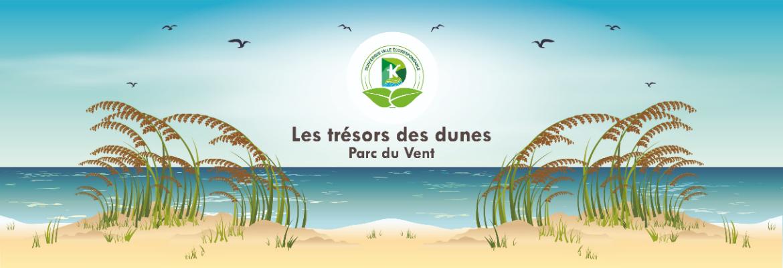 Les trésors des dunes