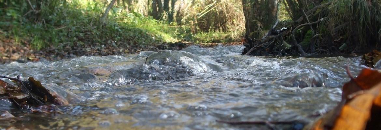 Balad'eau Mureaux