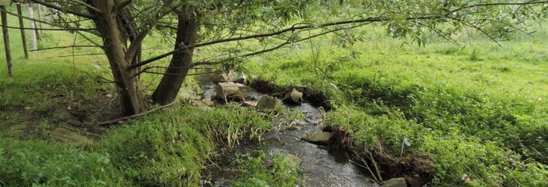 Une goutte d'eau dans la ville - Savenay