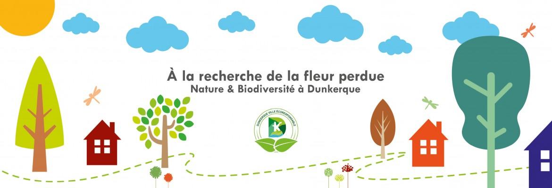 A la recherche de la fleur perdue - Nature et biodiversité à Dunkerque